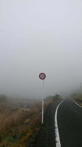 どこまでも霧
