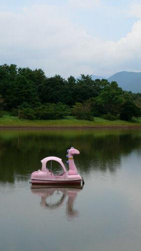 ピンクボート