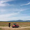 大型草刈り機
