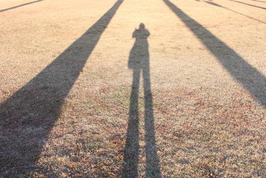 背の高い影 背の高い影 運動公園 公園のヤシの木の影が見えないところまで伸びてまし... きゃー