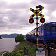 大村湾の列車