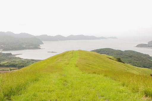 平戸の野原