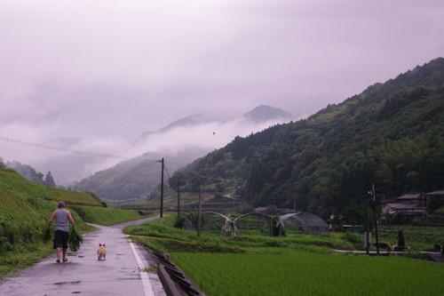 梅雨の真ん中