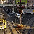 黄色いチンチン電車