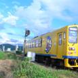 黄色い一輌列車